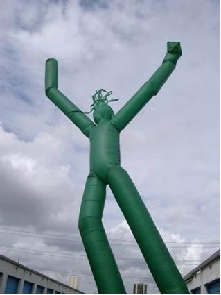 Green Fly Guy