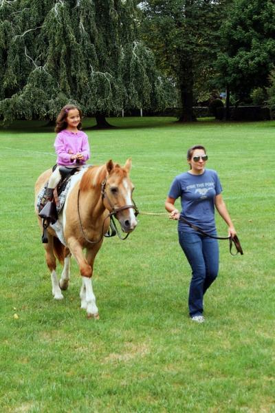 Pony Rides (2 Ponies)/Hr.