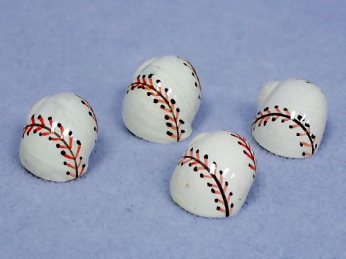 Baseball Hermit Crab Racing