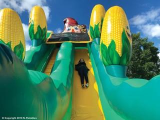 Scarecrow Slide